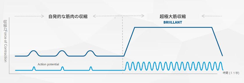 超極大筋収縮発生グラフ